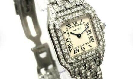 CARTIER PANTHERE 22mm Quartz Steel ~2.40TCW Full DIAMONDS Watch