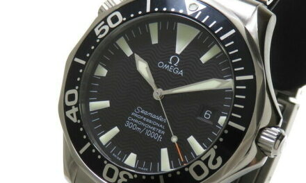 OMEGA  Seamaster Professional 2254.50 Watches Stainless Steel Mechanical Aut…