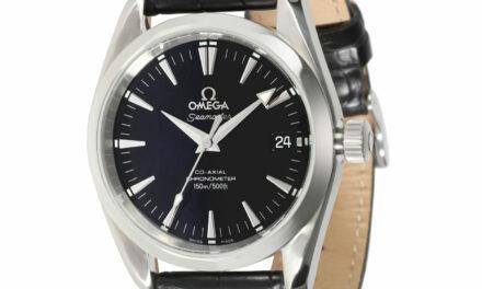 Omega Seamaster Aqua Terra 2504.50.00 Men's Watch in  Stainless Steel