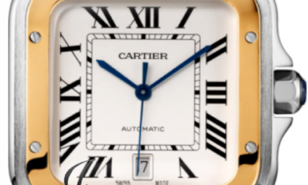 Cartier Santos Yellow Gold/Steel W2SA0009 Silver Large Bracelet Automatic NEW